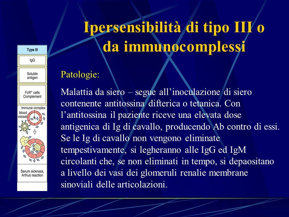 Patologie: Malattia da siero – segue allinoculazione di siero contenente antitossina difterica o tetanica. Con lantitossina il paziente riceve una ele