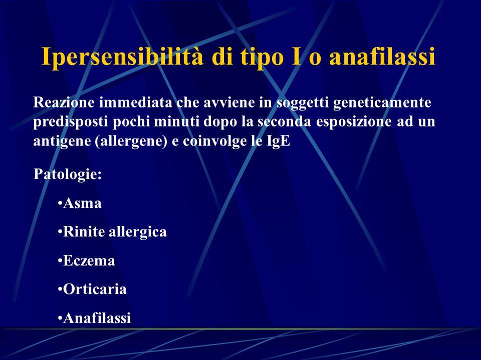 Ipersensibilità di tipo I o anafilassi Reazione immediata che avviene in soggetti geneticamente predisposti pochi minuti dopo la seconda esposizione a