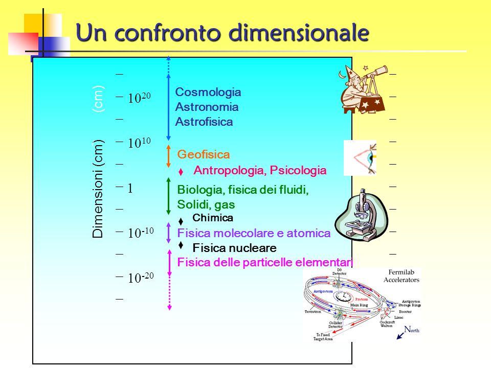 Introduzione La Fisica delle Particelle non e solo una classificazione zoologica delle particelle esistenti in Natura, bensi aspira a comprendere il m