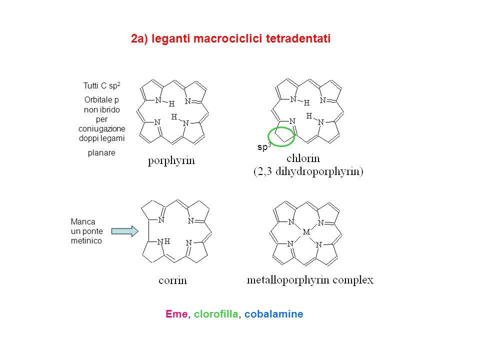 2a) leganti macrociclici tetradentati Eme, clorofilla, cobalamine sp 3 Manca un ponte metinico Tutti C sp 2 Orbitale p non ibrido per coniugazione dop