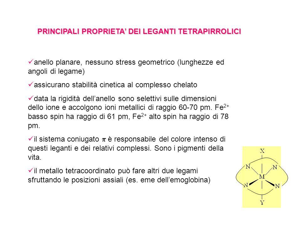 PRINCIPALI PROPRIETA DEI LEGANTI TETRAPIRROLICI anello planare, nessuno stress geometrico (lunghezze ed angoli di legame) assicurano stabilità cinetica al complesso chelato data la rigidità dellanello sono selettivi sulle dimensioni dello ione e accolgono ioni metallici di raggio 60-70 pm.