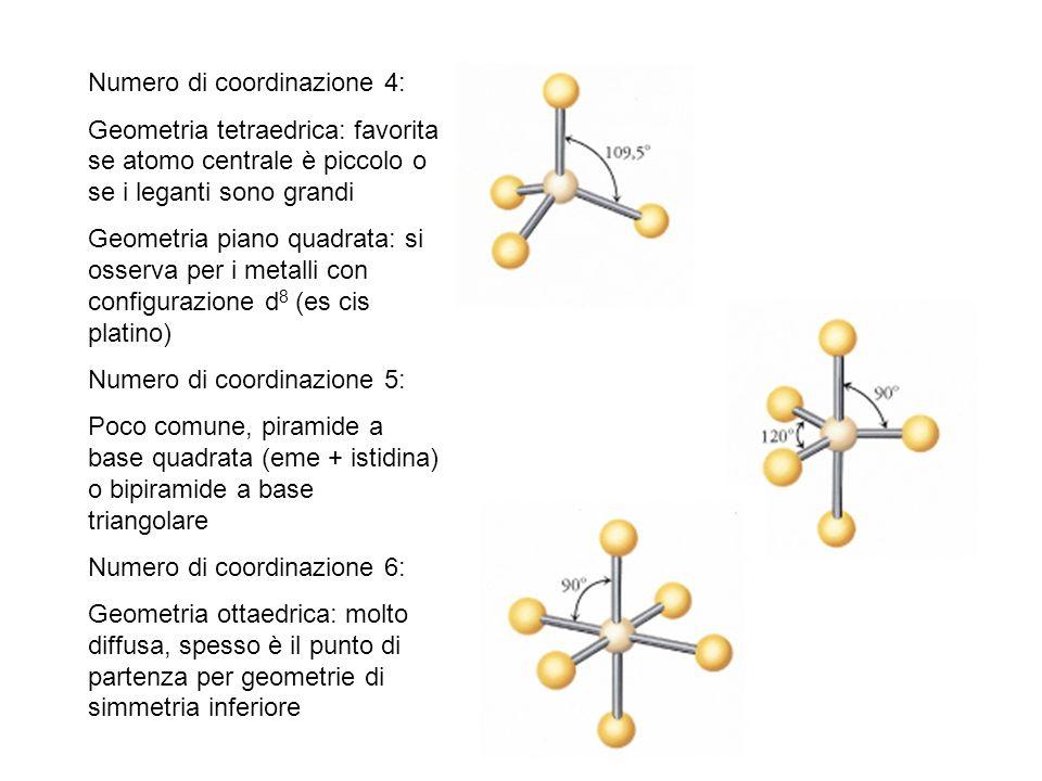 Numero di coordinazione 4: Geometria tetraedrica: favorita se atomo centrale è piccolo o se i leganti sono grandi Geometria piano quadrata: si osserva