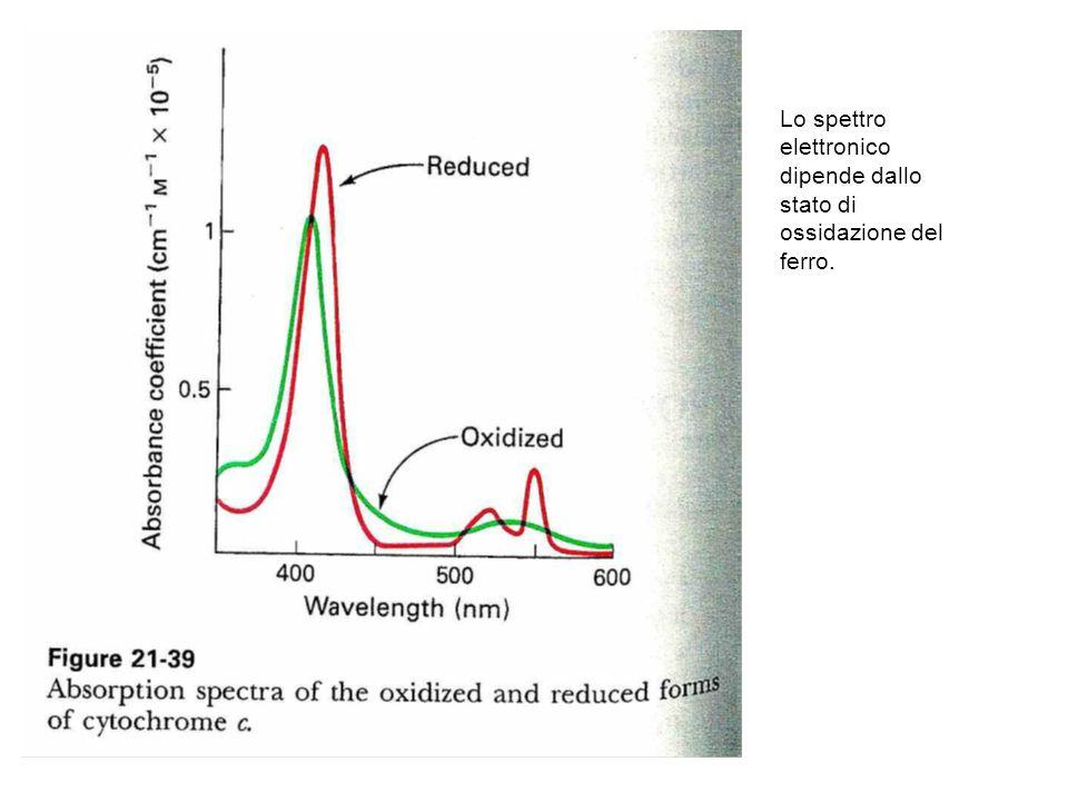 Lo spettro elettronico dipende dallo stato di ossidazione del ferro.