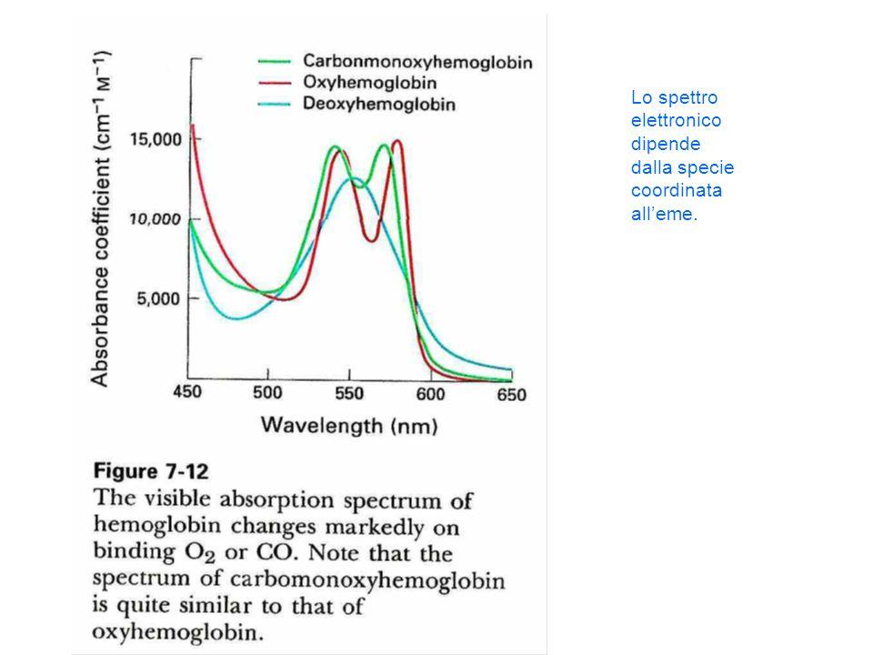 Lo spettro elettronico dipende dalla specie coordinata alleme.