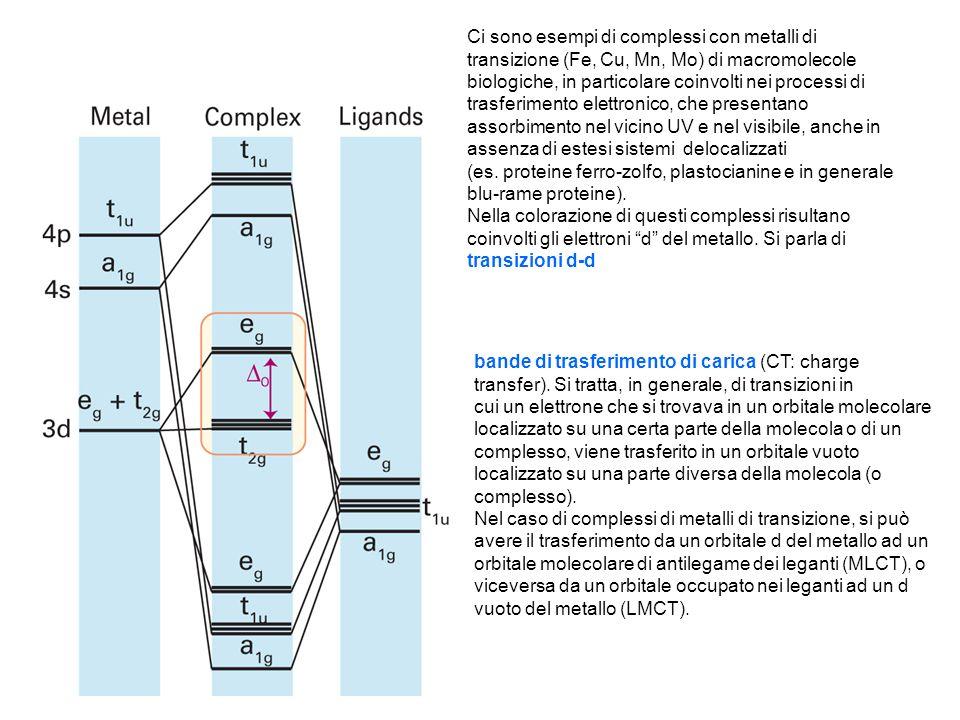 Ci sono esempi di complessi con metalli di transizione (Fe, Cu, Mn, Mo) di macromolecole biologiche, in particolare coinvolti nei processi di trasferi