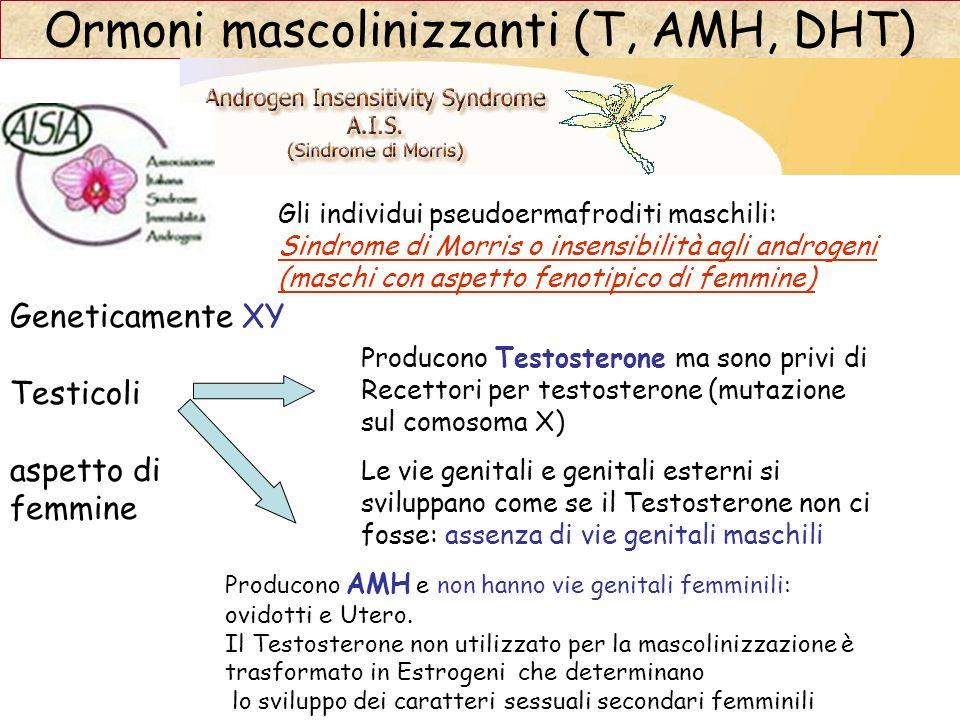 Ormoni mascolinizzanti (T, AMH, DHT) Gli individui pseudoermafroditi maschili: Sindrome di Morris o insensibilità agli androgeni (maschi con aspetto f