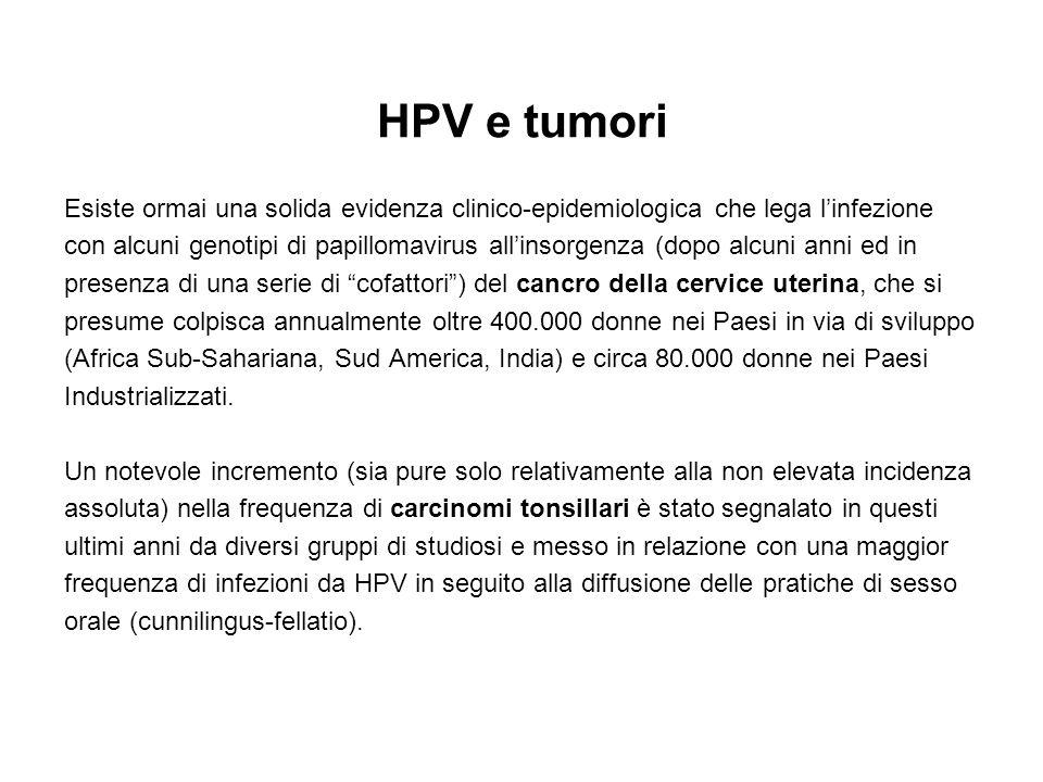 HPV e tumori Esiste ormai una solida evidenza clinico-epidemiologica che lega linfezione con alcuni genotipi di papillomavirus allinsorgenza (dopo alc