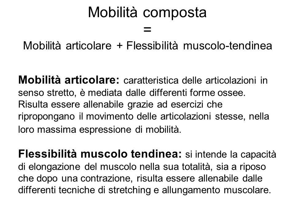 Mobilità composta = Mobilità articolare + Flessibilità muscolo-tendinea Mobilità articolare: caratteristica delle articolazioni in senso stretto, è me