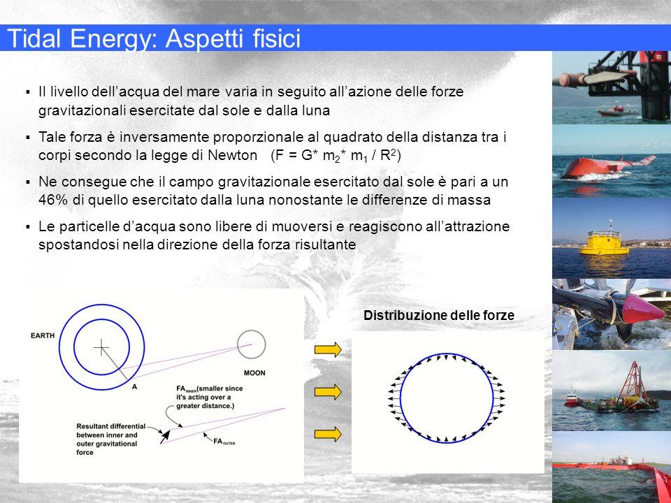 Tidal Energy: Aspetti fisici Distribuzione delle forze Il livello dellacqua del mare varia in seguito allazione delle forze gravitazionali esercitate