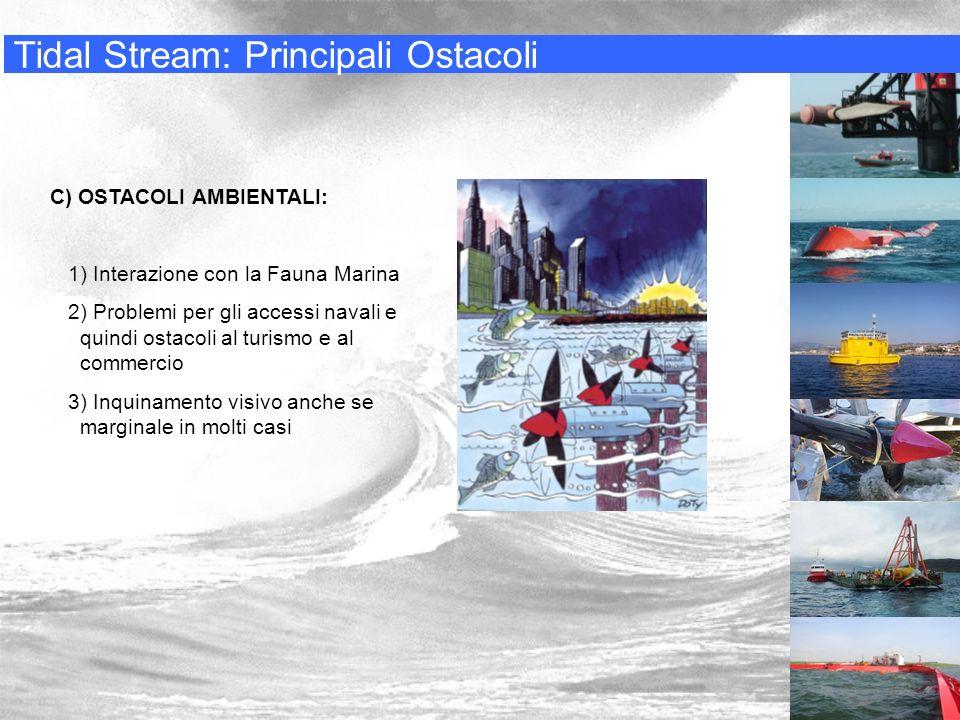 Tidal Stream: Principali Ostacoli C) OSTACOLI AMBIENTALI: 1) Interazione con la Fauna Marina 2) Problemi per gli accessi navali e quindi ostacoli al t