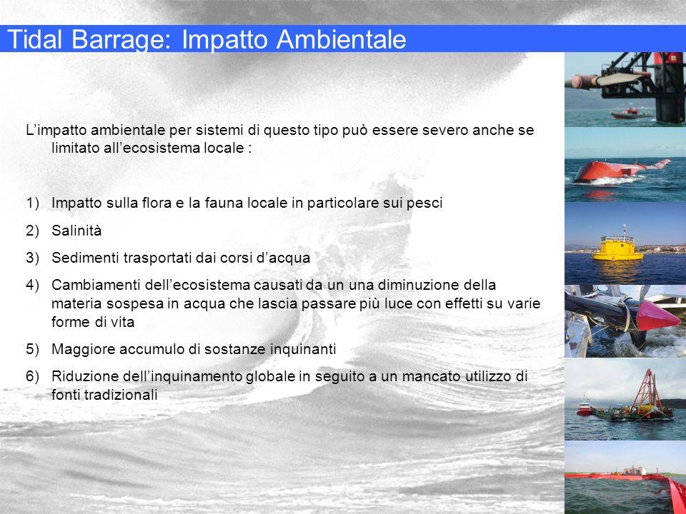 Tidal Barrage: Impatto Ambientale Limpatto ambientale per sistemi di questo tipo può essere severo anche se limitato allecosistema locale : 1)Impatto
