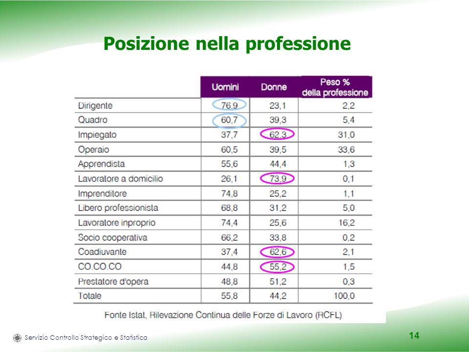 Servizio Controllo Strategico e Statistica 14 Posizione nella professione