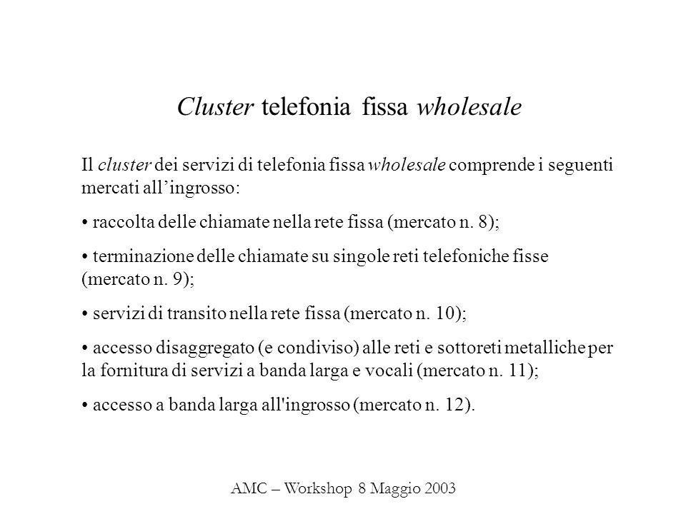 AMC – Workshop 8 Maggio 2003 Il cluster dei servizi di telefonia fissa wholesale comprende i seguenti mercati allingrosso: raccolta delle chiamate nella rete fissa (mercato n.