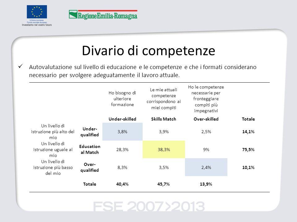 Divario di competenze Autovalutazione sul livello di educazione e le competenze e che i formati considerano necessario per svolgere adeguatamente il lavoro attuale.