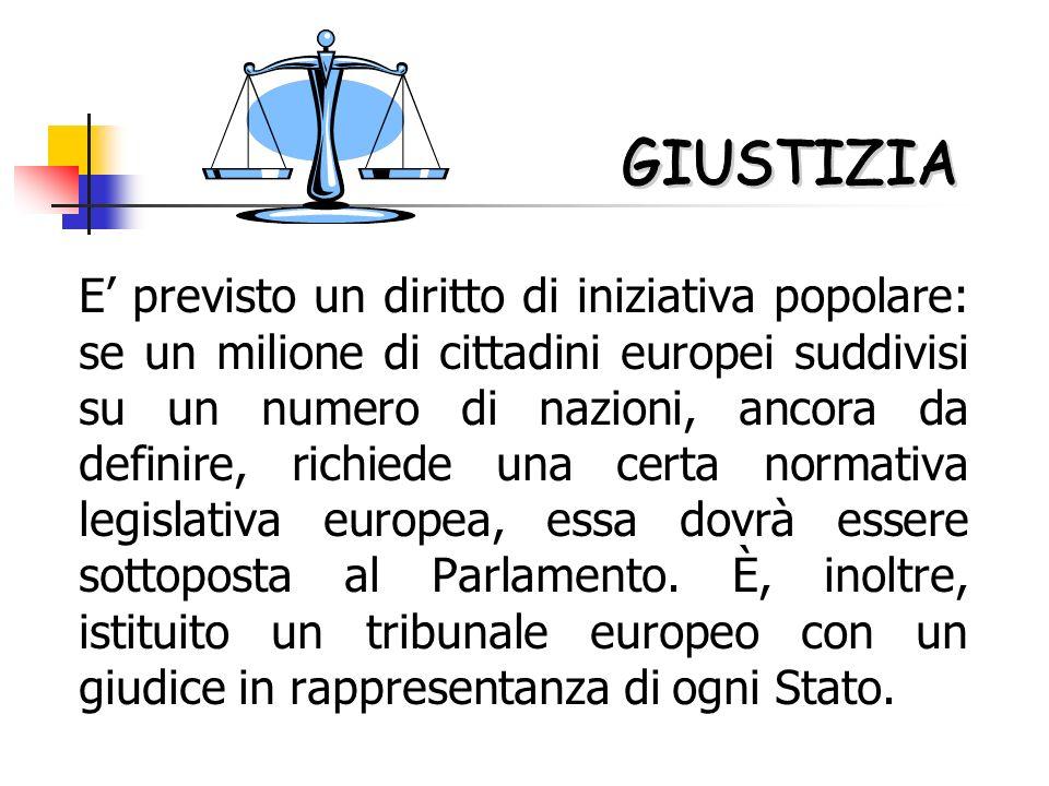 E previsto un diritto di iniziativa popolare: se un milione di cittadini europei suddivisi su un numero di nazioni, ancora da definire, richiede una certa normativa legislativa europea, essa dovrà essere sottoposta al Parlamento.