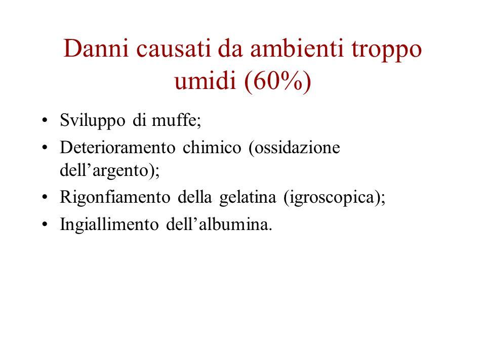 Danni causati da ambienti troppo umidi (60%) Sviluppo di muffe; Deterioramento chimico (ossidazione dellargento); Rigonfiamento della gelatina (igrosc
