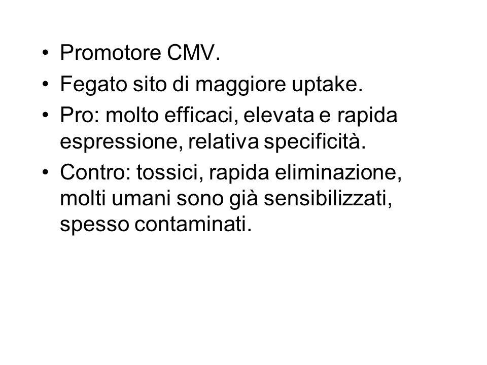 Promotore CMV. Fegato sito di maggiore uptake. Pro: molto efficaci, elevata e rapida espressione, relativa specificità. Contro: tossici, rapida elimin