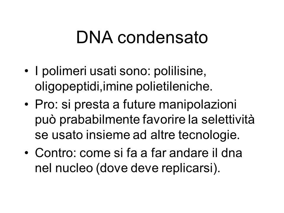 DNA condensato I polimeri usati sono: polilisine, oligopeptidi,imine polietileniche. Pro: si presta a future manipolazioni può prababilmente favorire