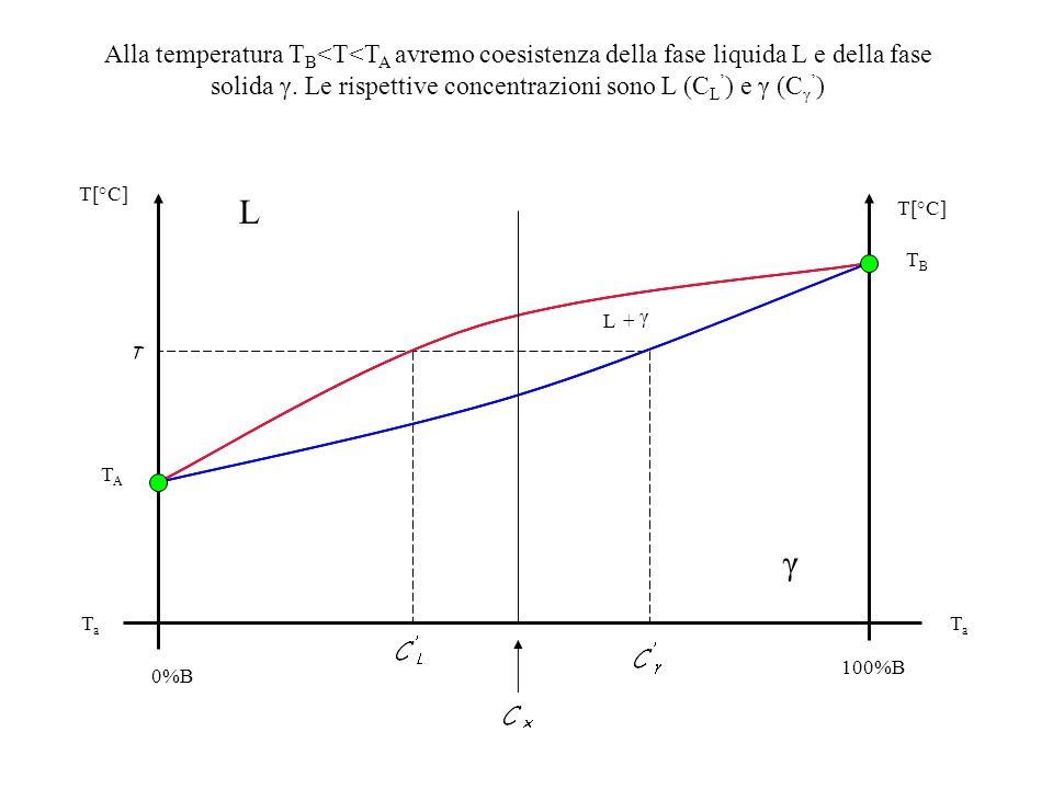 T[°C] TBTB TATA 0%B 100%B TaTa TaTa L L+ γ γ Alla temperatura T B <T<T A avremo coesistenza della fase liquida L e della fase solida γ. Le rispettive