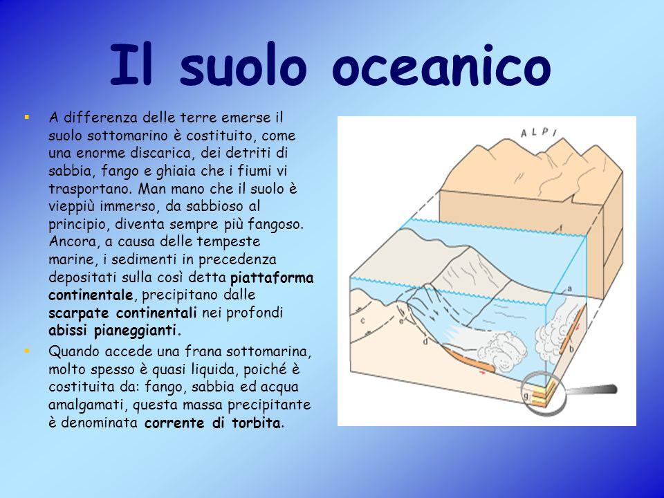 Il suolo oceanico A differenza delle terre emerse il suolo sottomarino è costituito, come una enorme discarica, dei detriti di sabbia, fango e ghiaia che i fiumi vi trasportano.