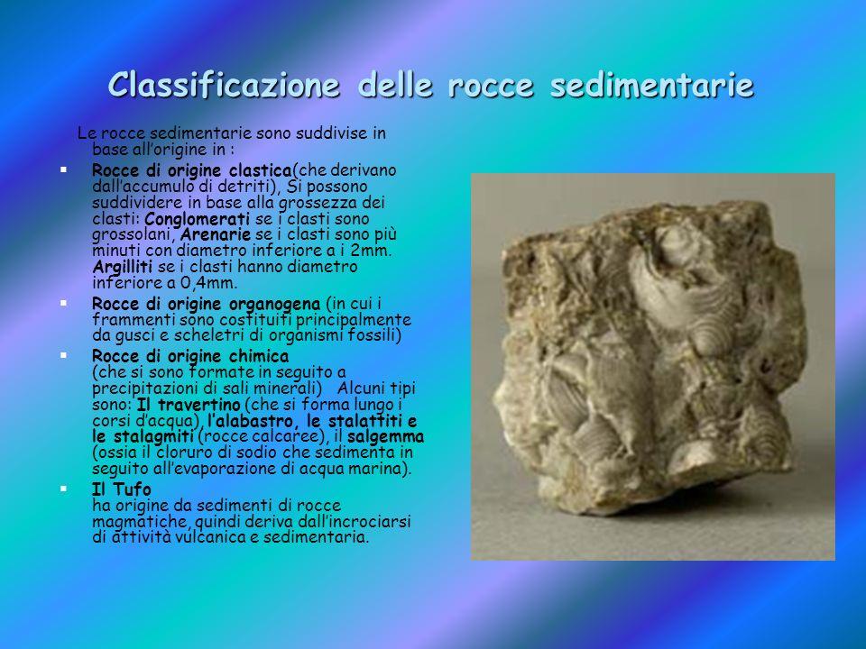 Classificazione delle rocce sedimentarie Le rocce sedimentarie sono suddivise in base allorigine in : Rocce di origine clastica(che derivano dallaccum