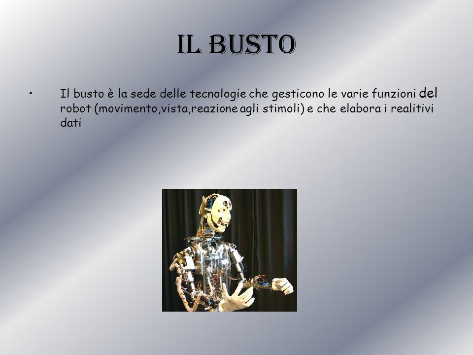 IL busto Il busto è la sede delle tecnologie che gesticono le varie funzioni del robot (movimento,vista,reazione agli stimoli) e che elabora i realiti