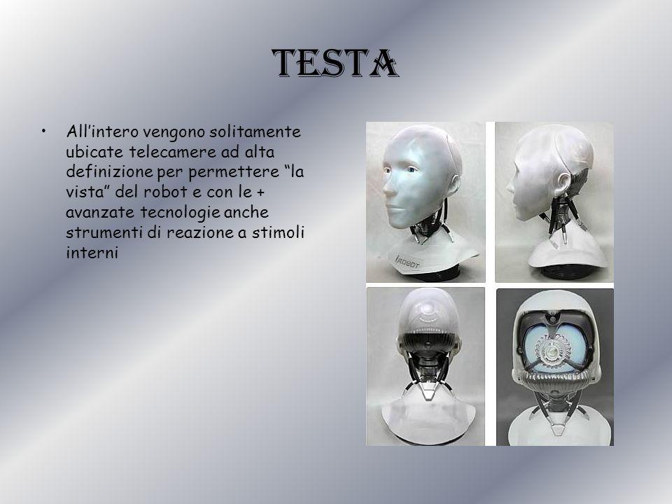 TESTA Allintero vengono solitamente ubicate telecamere ad alta definizione per permettere la vista del robot e con le + avanzate tecnologie anche stru