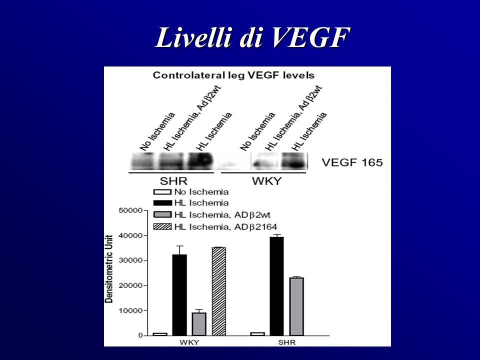 Livelli di VEGF