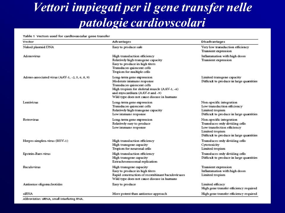 Sistemi di trasferimento Al momento diversi metodi per il trasferimento locale dei geni sono stati sviluppati tra i quali: (a) sistemi di trasferimento genico ex-vivo, come stents endovascolari rivestiti con cellule endoteliali geneticamente modificate che sono poi reimpiantati nei vasi bersaglio; (b) trasferimento basato su tecnica chirurgica che comporta liniezione diretta dei geni in vasi bersaglio isolati chirurgicamente; (c) trasferimento percutaneo che comporta la somministrazione diretta dei geni nel bersaglio attraverso unapproccio percutaneo; (d) trasferimento genico basato su catetere.