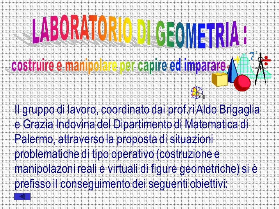 Il gruppo di lavoro, coordinato dai prof.ri Aldo Brigaglia e Grazia Indovina del Dipartimento di Matematica di Palermo, attraverso la proposta di situazioni problematiche di tipo operativo (costruzione e manipolazoni reali e virtuali di figure geometriche) si è prefisso il conseguimento dei seguenti obiettivi: