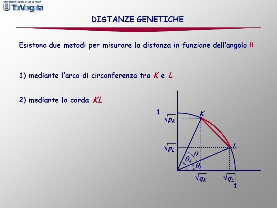 corrisponde al valore di 1, cioè a una sostituzione completa, I metodo: calcolo della distanza genetica in funzione dellarco di circonferenza tra i punti K e L possiamo misurare la distanza relativamente alla sostituzione completa: Dato che: DISTANZE GENETICHE