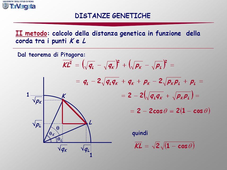 sostituendo i valori delle frequenze alleliche: In questo caso, sempre tenendo presente che due punti alle estremità di un arco di 90° ( /2 in rad) rappresentano una sostituzione completa, e quindi la massima distanza possibile che corrisponde al valore di 1, possiamo misurare la distanza relativamente alla sostituzione completa: quindi DISTANZE GENETICHE