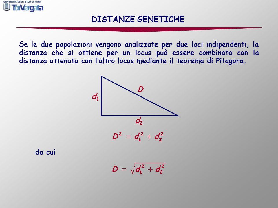 Se i loci che si analizzano sono più di due, locus 1 d 1 la distanza è DISTANZE GENETICHE locus 2 d 2 locus 3 d 3 locus n d n
