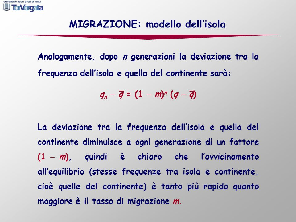 Analogamente, dopo n generazioni la deviazione tra la frequenza dellisola e quella del continente sarà: q n q = (1 m) n (q q) Analogamente, dopo n gen