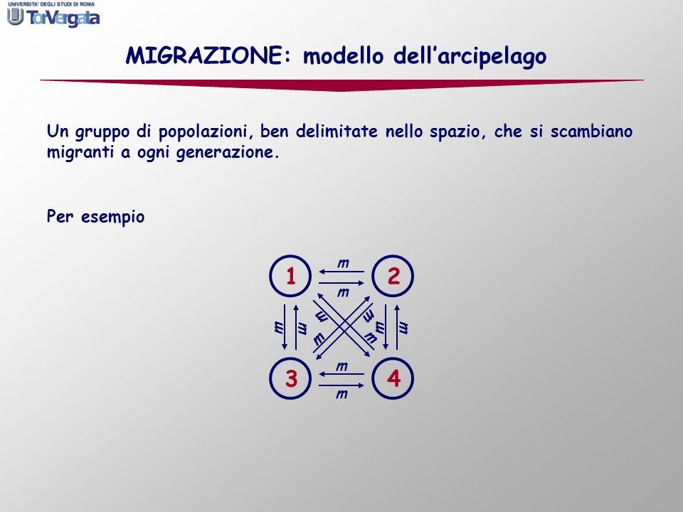 Un gruppo di popolazioni, ben delimitate nello spazio, che si scambiano migranti a ogni generazione. m 1 43 2 m m m m m m m m m m m Per esempio MIGRAZ