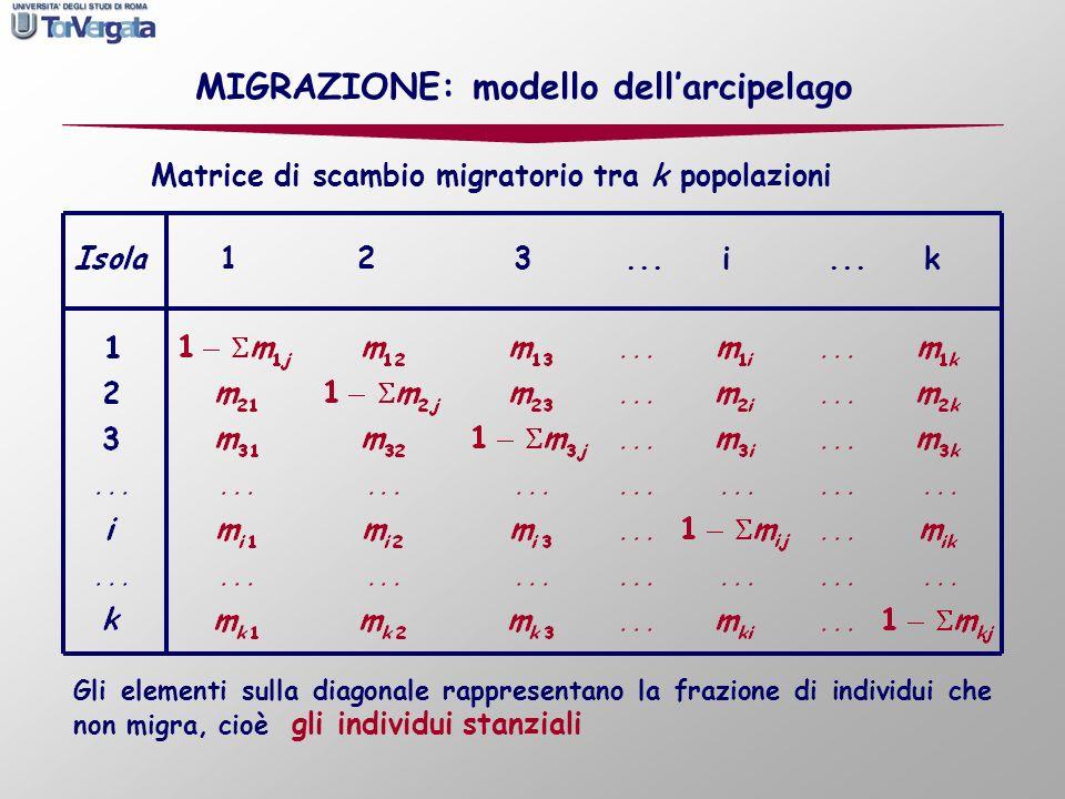 1...i k23 Matrice di scambio migratorio tra k popolazioni Gli elementi sulla diagonale rappresentano la frazione di individui che non migra, cioè gli