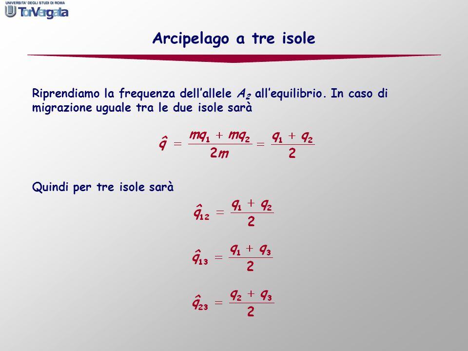 Quindi per tre isole sarà Arcipelago a tre isole Riprendiamo la frequenza dellallele A 2 allequilibrio. In caso di migrazione uguale tra le due isole