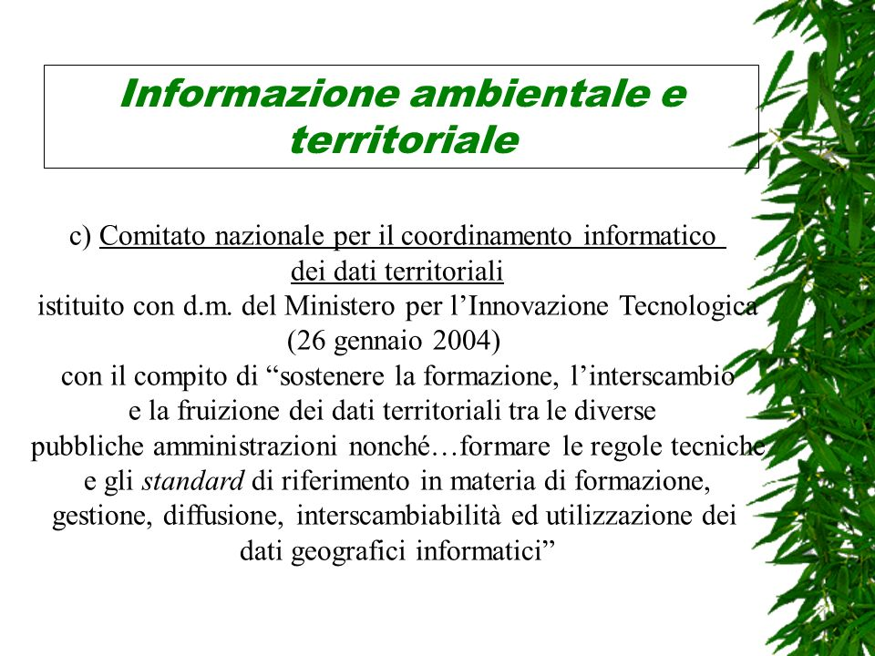 Informazione ambientale e territoriale c) Comitato nazionale per il coordinamento informatico dei dati territoriali istituito con d.m.
