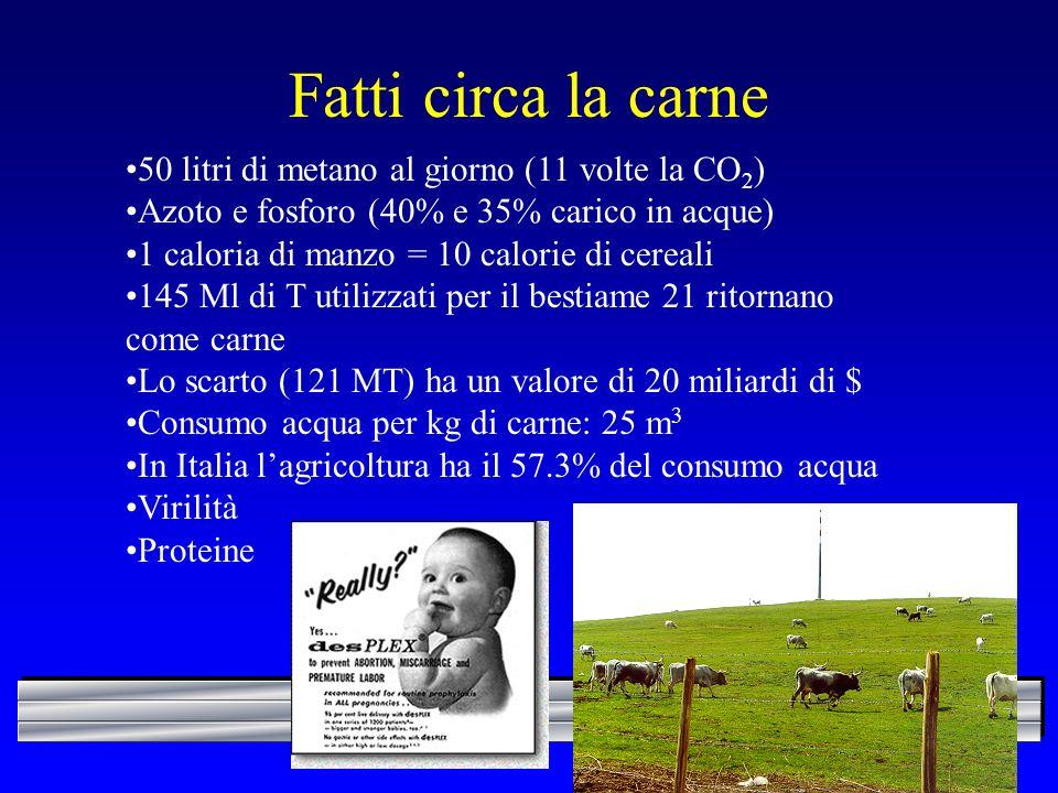 Fatti circa la carne 50 litri di metano al giorno (11 volte la CO 2 ) Azoto e fosforo (40% e 35% carico in acque) 1 caloria di manzo = 10 calorie di c