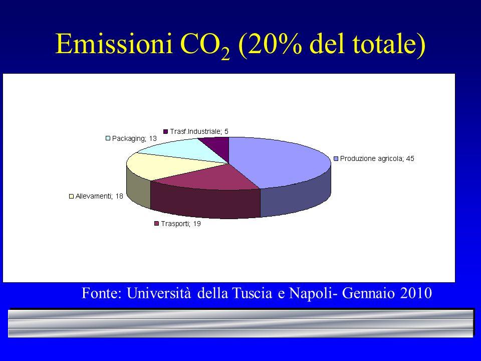 Emissioni CO 2 (20% del totale) Fonte: Università della Tuscia e Napoli- Gennaio 2010
