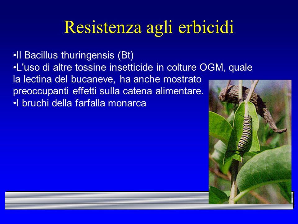 Resistenza agli erbicidi Il Bacillus thuringensis (Bt) L'uso di altre tossine insetticide in colture OGM, quale la lectina del bucaneve, ha anche most