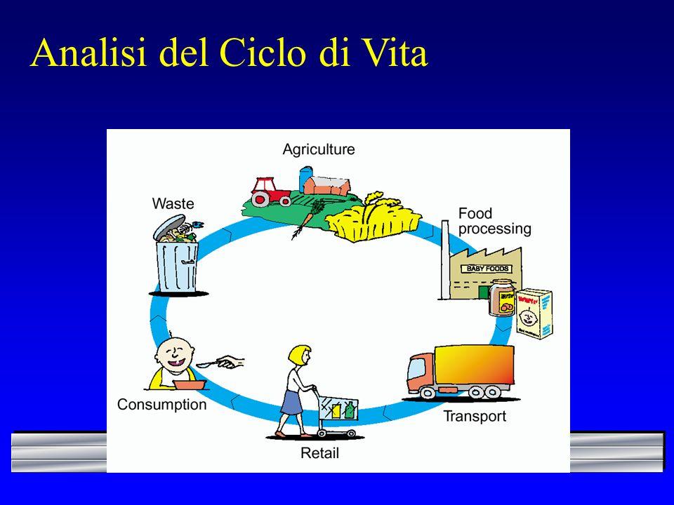 Analisi del Ciclo di Vita