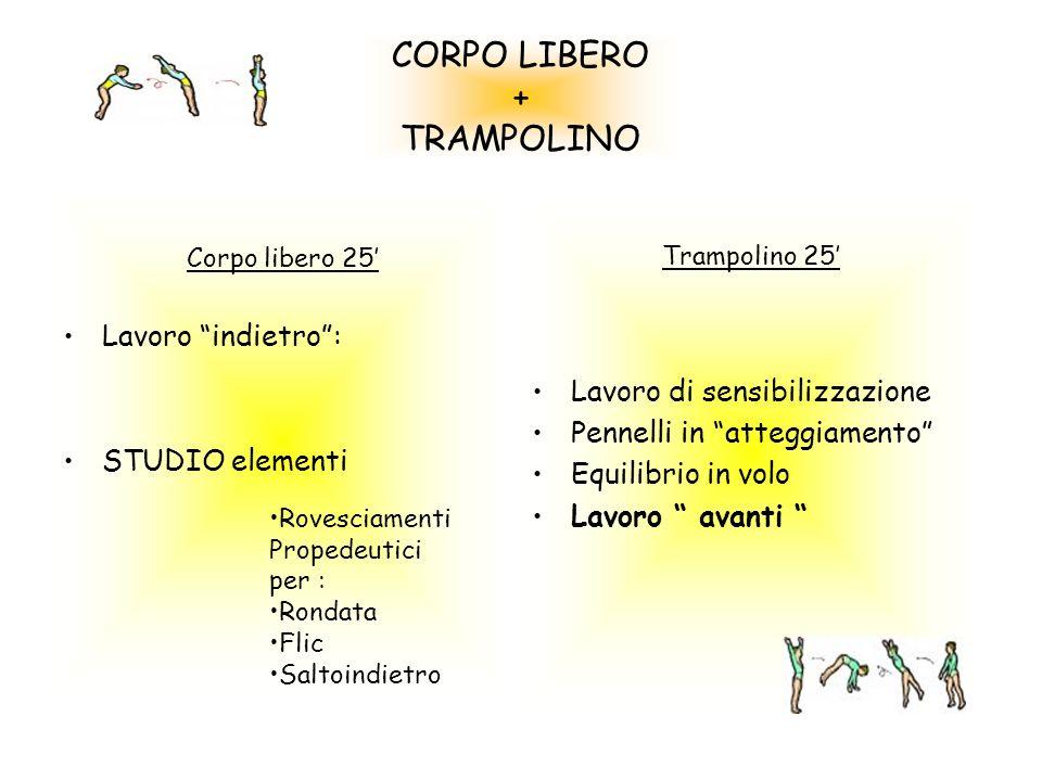 CORPO LIBERO + TRAMPOLINO Corpo libero 25 Lavoro indietro: STUDIO elementi Trampolino 25 Lavoro di sensibilizzazione Pennelli in atteggiamento Equilib