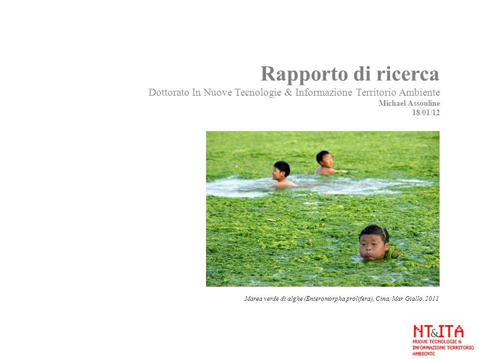 Rapporto di ricerca Dottorato In Nuove Tecnologie & Informazione Territorio Ambiente Michael Assouline 18/01/12 Marea verde di alghe (Enteromorpha pro