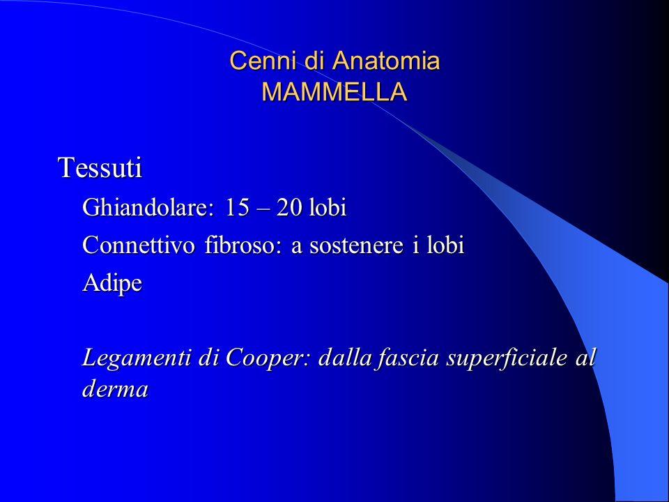 Cenni di Anatomia MAMMELLA Tessuti Ghiandolare: 15 – 20 lobi Connettivo fibroso: a sostenere i lobi Adipe Legamenti di Cooper: dalla fascia superficia