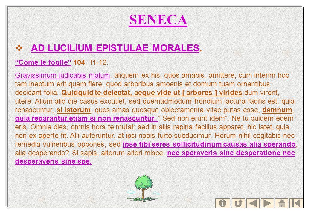 SENECA AD LUCILIUM EPISTULAE MORALES.AD LUCILIUM EPISTULAE MORALES Come le foglieCome le foglie 104, 11-12. Gravissimum iudicabis malumGravissimum iud