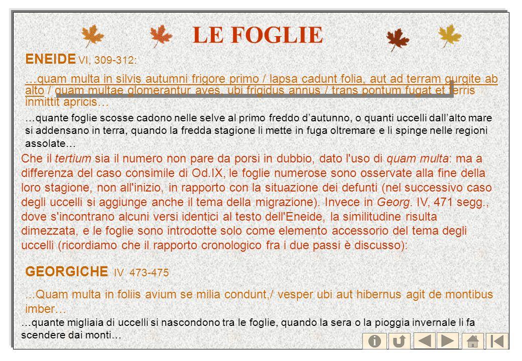 LE FOGLIE ENEIDE VI, 309-312: …quam multa in silvis autumni frigore primo / lapsa cadunt folia, aut ad terram gurgite ab alto / quam multae glomerantu