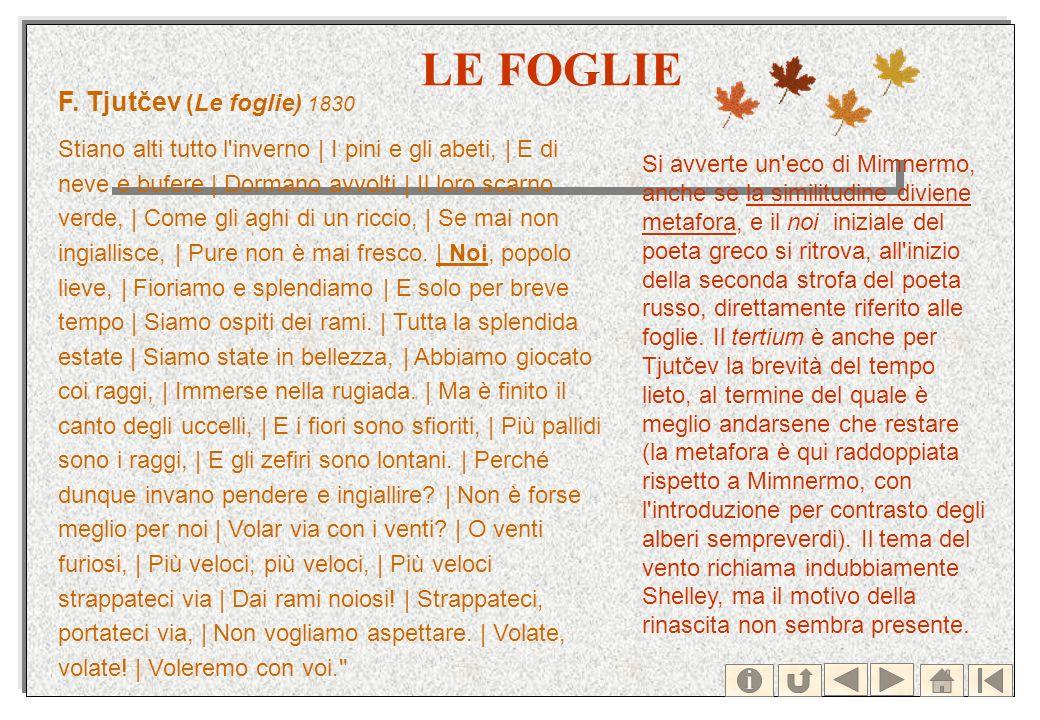LE FOGLIE F. Tjutčev (Le foglie) 1830 Stiano alti tutto l'inverno | I pini e gli abeti, | E di neve e bufere | Dormano avvolti | Il loro scarno verde,