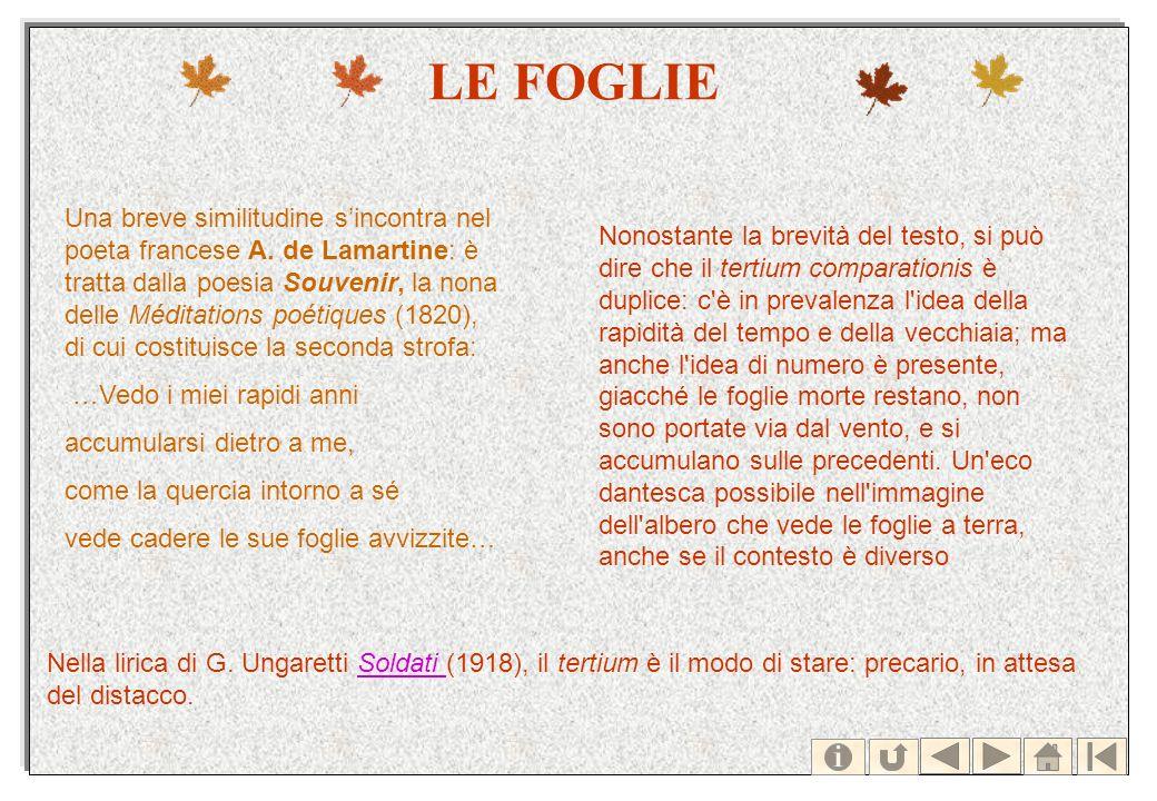 LE FOGLIE Una breve similitudine sincontra nel poeta francese A. de Lamartine: è tratta dalla poesia Souvenir, la nona delle Méditations poétiques (18