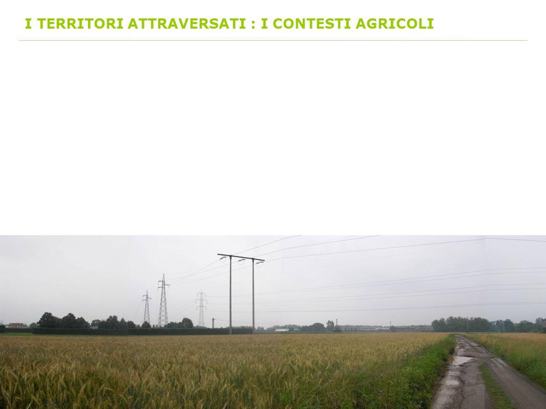 I TERRITORI ATTRAVERSATI : I CONTESTI AGRICOLI
